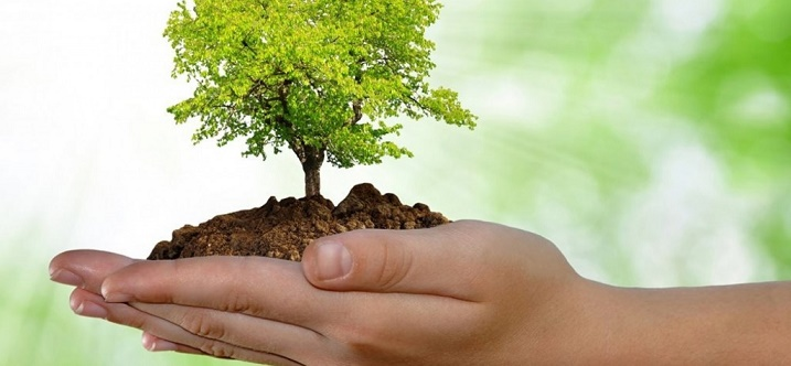 Por una Conciencia Ambientalista