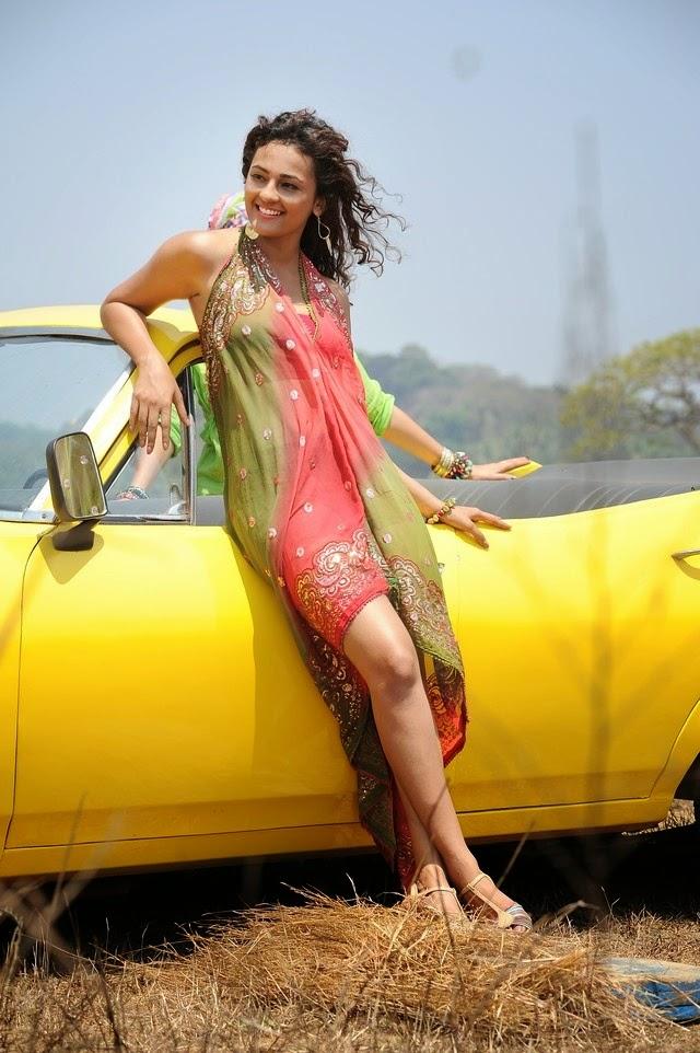 Seerat Kapoor New Hot Stills