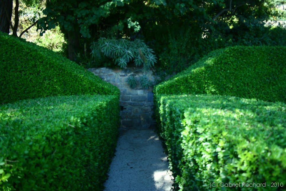 Jardins cosmopolites silence a pousse hy res for Jardin villa noailles hyeres