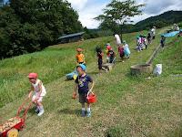園児たちは畑の中が好きで楽しく遊んでいた