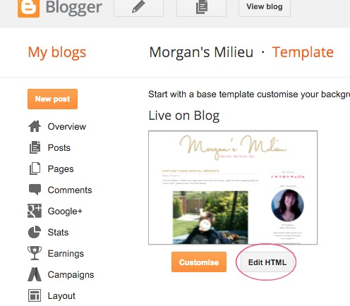 How To Move Your Search Bar Into Your Navigation Menu | Morgan's Milieu: Time to edit your HTML