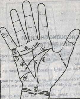 Bói Toán Cách xem bói chỉ tay đường tình duyên-hôn nhân-sự nghiệp trên bàn tay 3