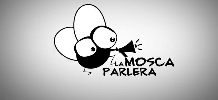 LA MOSCA PARLERA