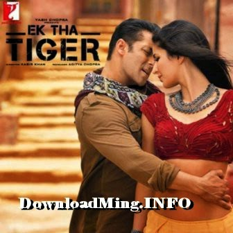Ek Tha Tiger 2012 full movie watch online