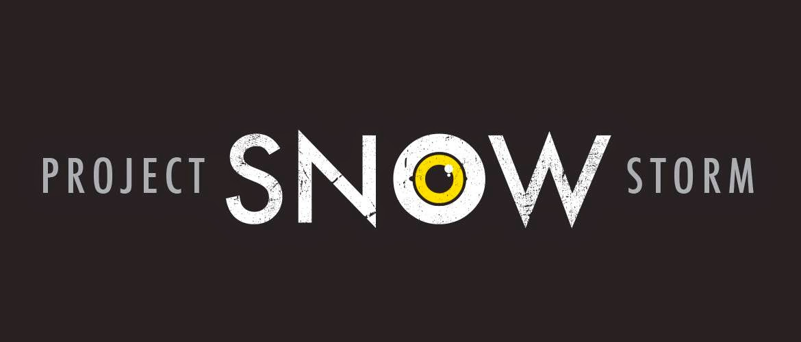 We Support Project Snowstorm!