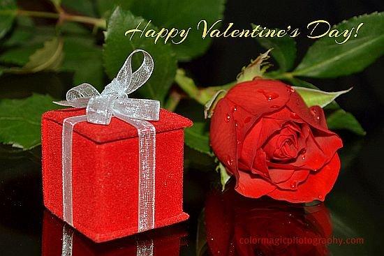 Happy Valentive's Day!