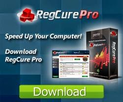 Popular Cleaner: RegCure Pro