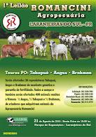 Laranjeiras do Sul:Romancini Agropecuária realizará o 1º Leilão de Gado e Touros PO