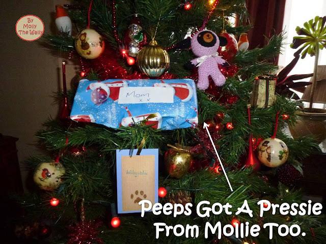 Molly The Wally & More Xmas Presents 8 !
