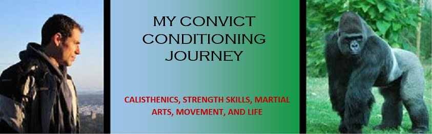 My Convict Conditioning Journey - A Blog of Progress