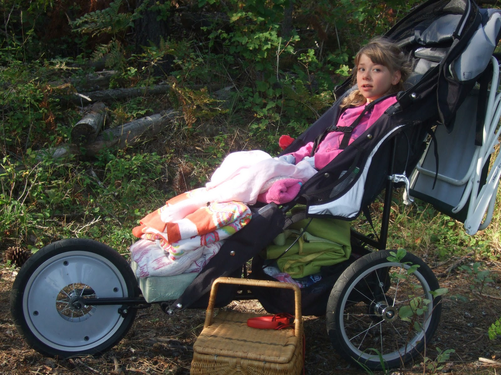 Alexandra or another Rett: Jogger Stroller for special needs kids