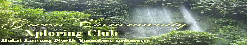 Green Community Club Bukit Lawang  I  Trekking Info