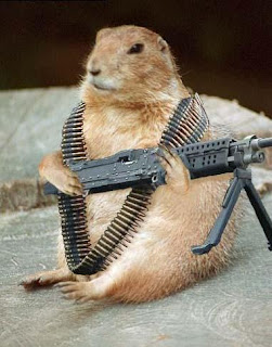 Animal with a gun