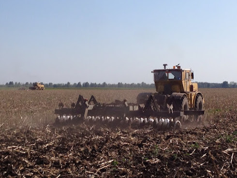 Discing maize stubble
