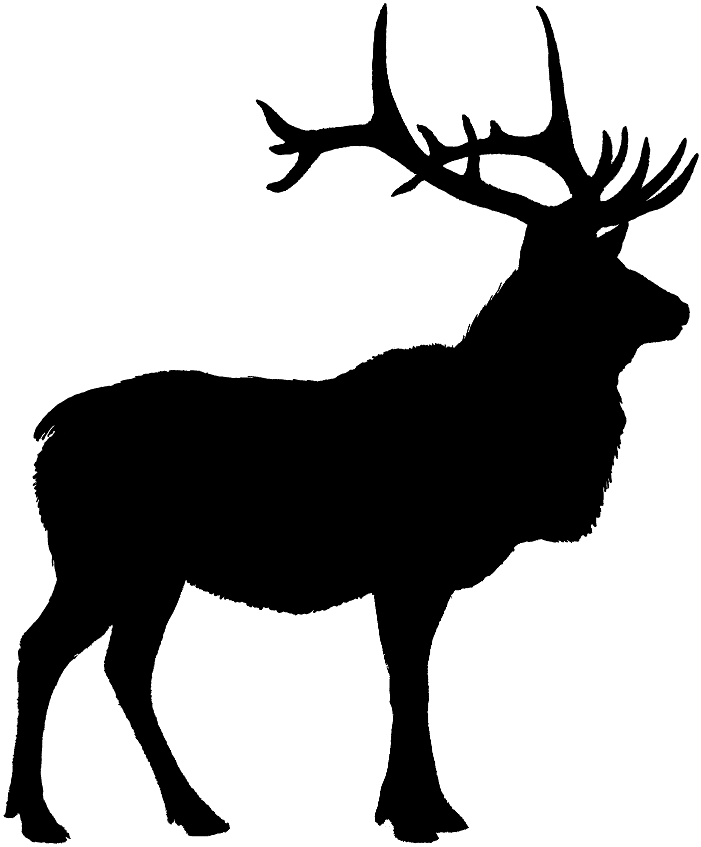 Elk Silhouette Cake Ideas And Designs