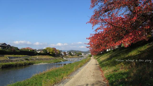 Fall Kamogawa