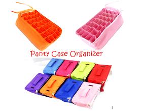 Panty Case Organizer