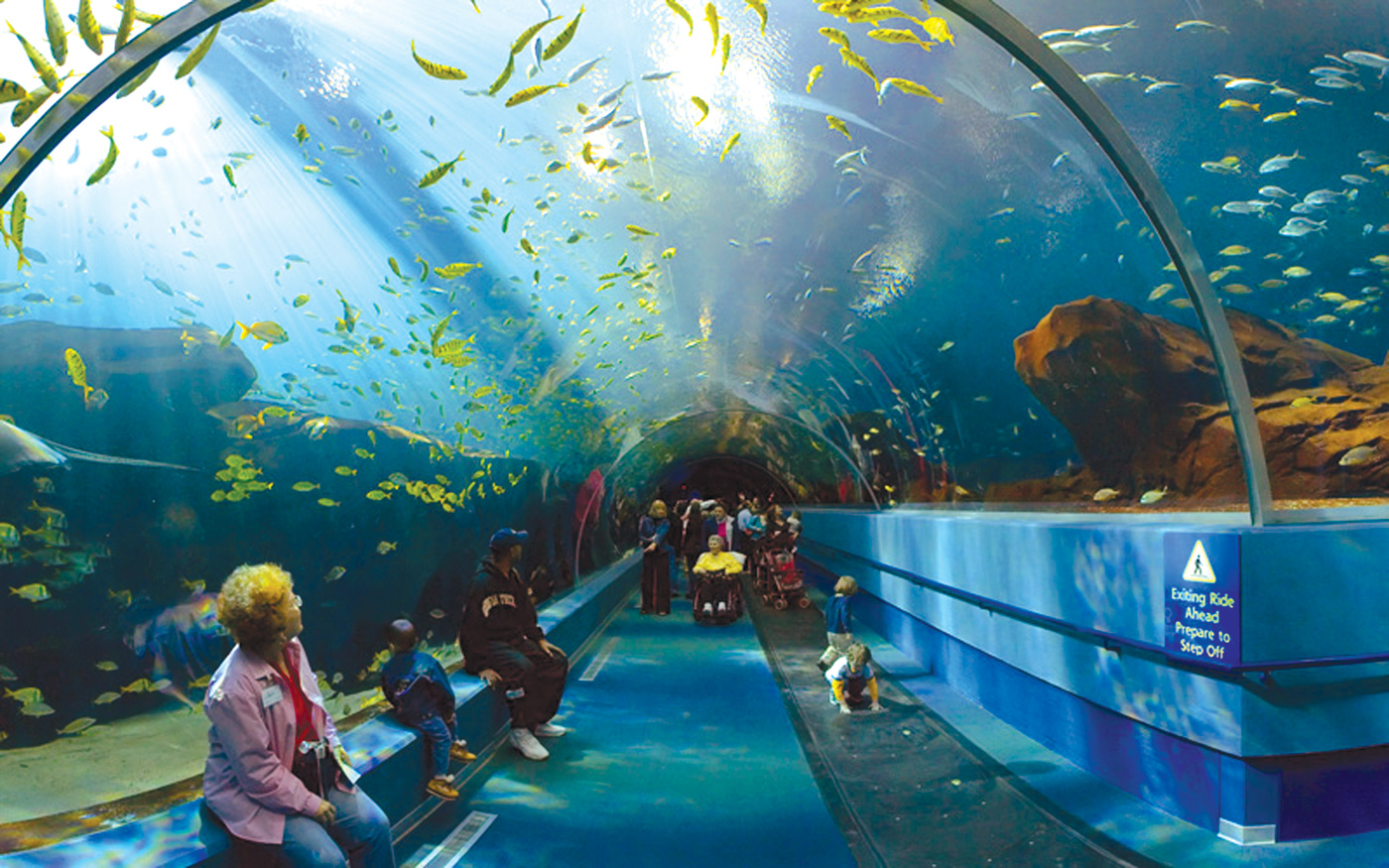 INTERESTING THINGS - Do You Know ??: WORLD's LARGEST AQUARIUM