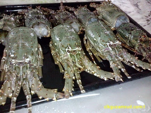 cara siang lobster