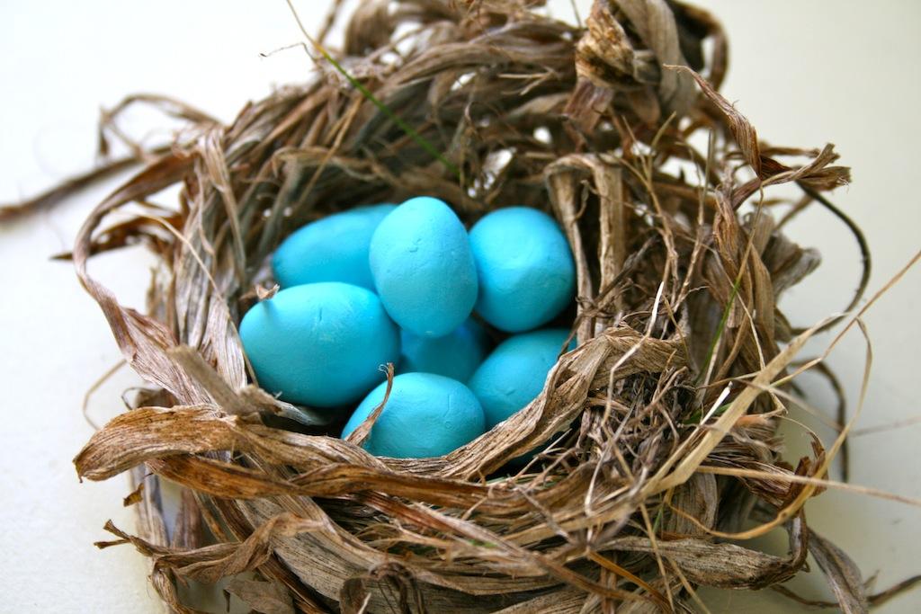 Как сделать гнездо птицы своими руками 85
