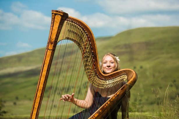 learn to play the harp in a day