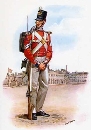 Ginn family of hertfordshire henry ginn royal marine d 1855 - Royal marines recruitment office ...