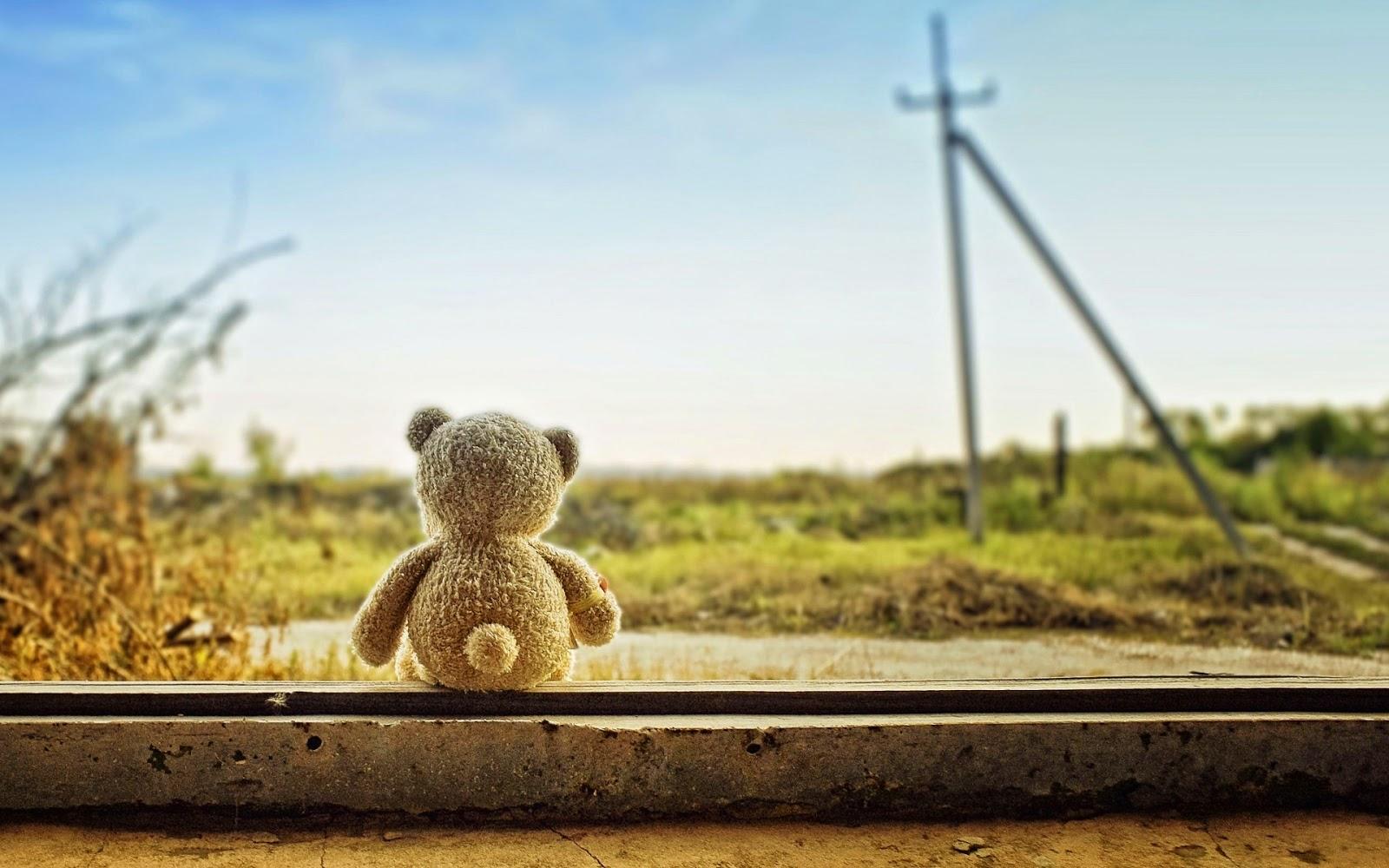 Teddy-bear-left-alone-feeling-lonely-sad-image-HD.jpg