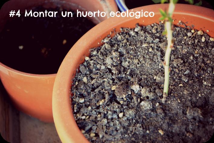 Montar un huerto ecológico
