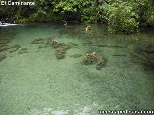 Aguas de color verde claro de la naciente del río Tioyacu (Rioja, Perú)- 1