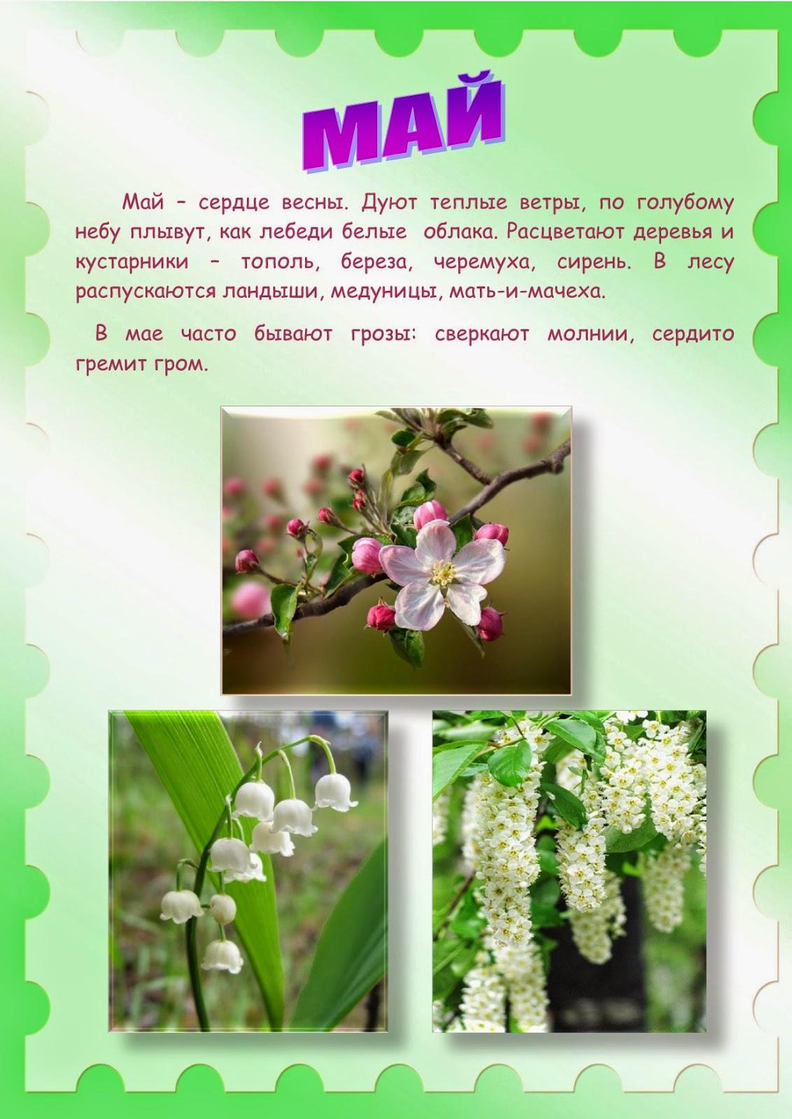 Красивые слова девушке на татарском языке