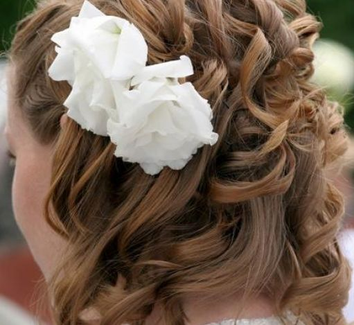 Wedding Hairstyles With Veils Wedding Hairstyles With Veils Wedding