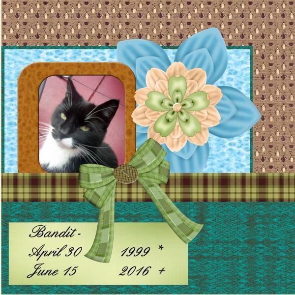 June 2016 Bandit