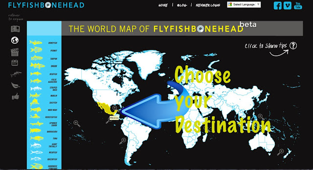 Flyfishbonehead is fly fishing in saltwater - introducing a world of travel and fishing to fly anglers worldwide - we make fly tying videos too