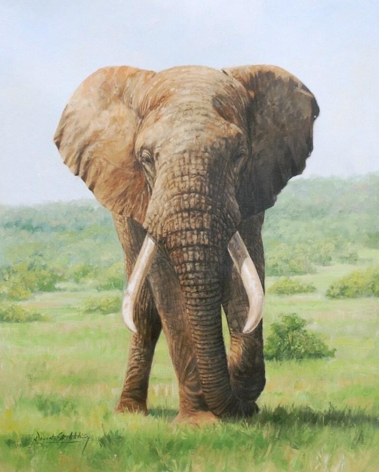 Galeria De Pintura Al Oleo: Pinturas Cuadros Lienzos: Galería: Pinturas Animales Al óleo