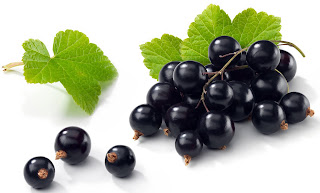 New Zealand Blackcurrants Good For The Brain