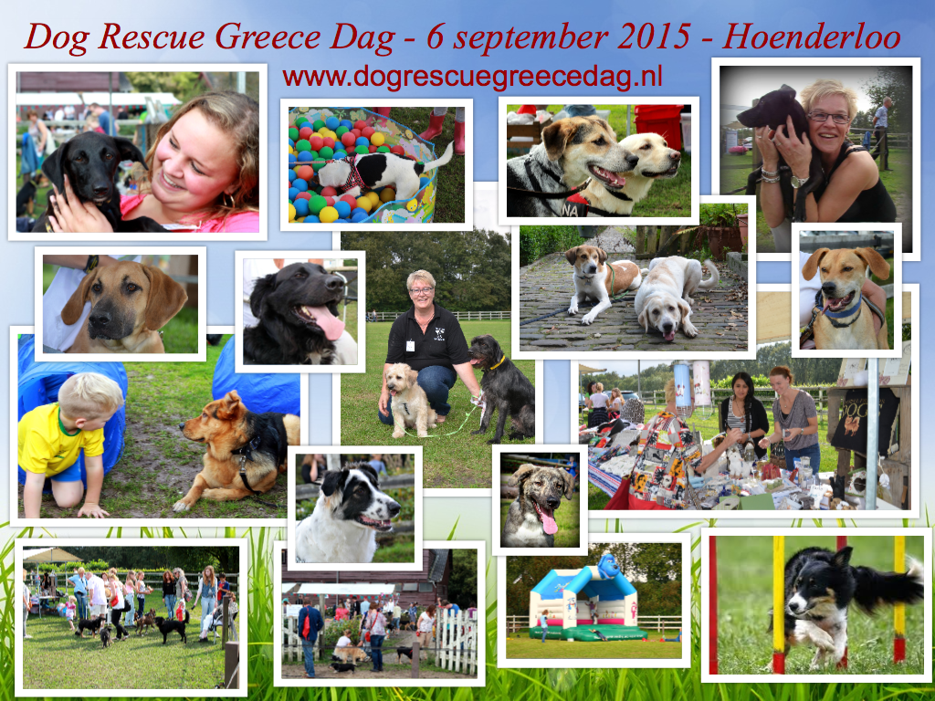 Dog Rescue Greece Dag 2015