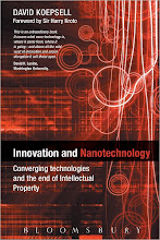 Innovation and Nanotechnology by David Koepsell