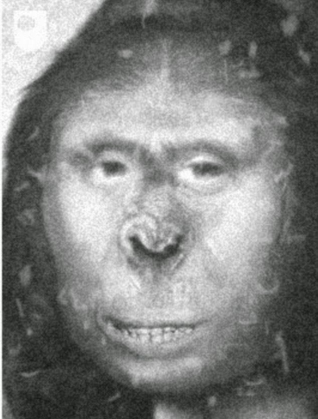 You Won't Believe What the DNA Of This Women Reveals