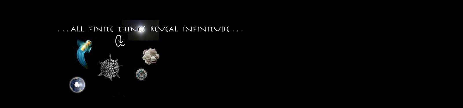 . . . All Finite Things Reveal Infinitude . . .