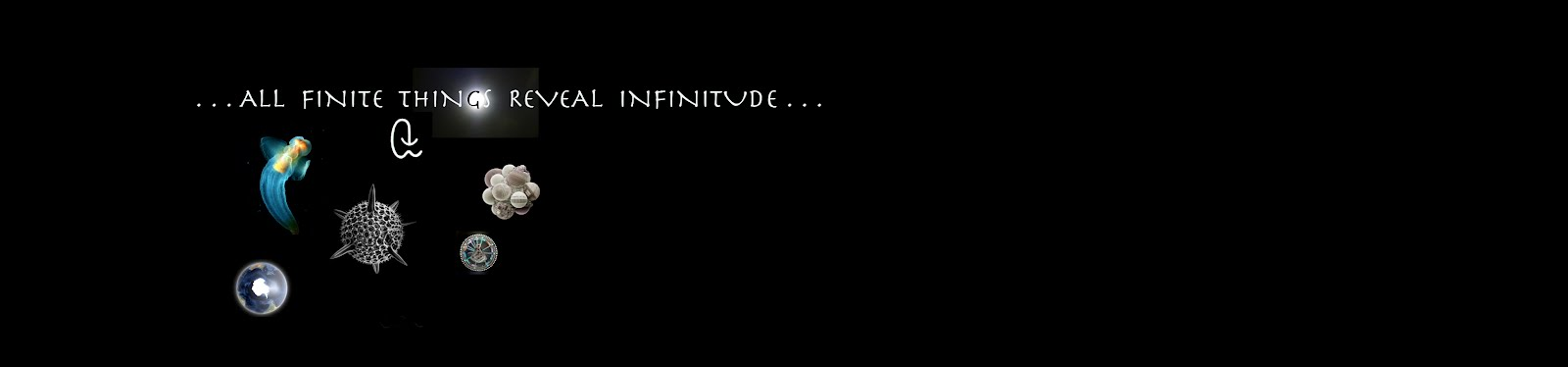 . . . All Finite Things Reveal Infinitude . . .
