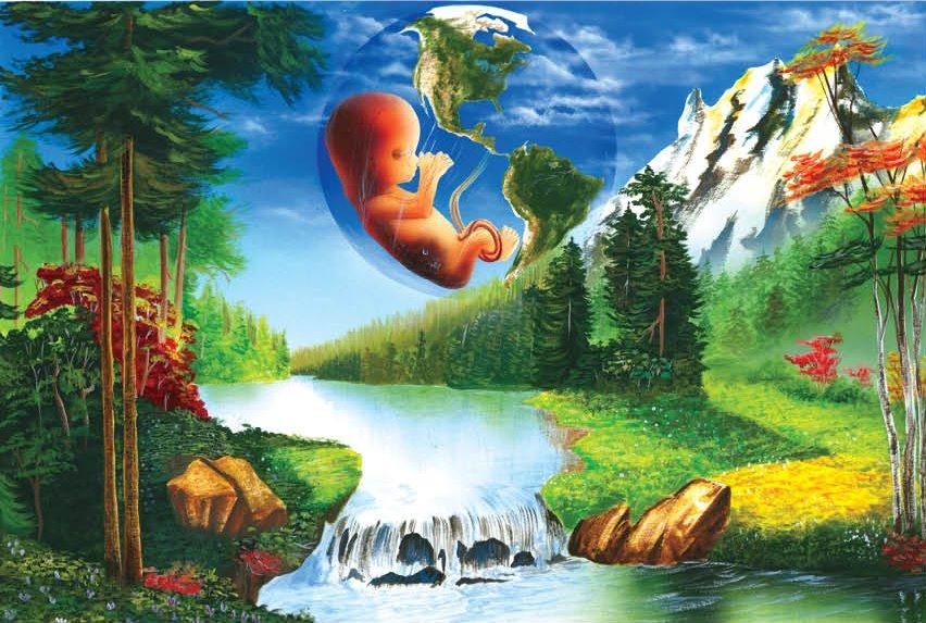 El DIA Del Medio Ambiente Imagenes