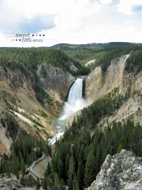 The Lower Falls - The Grand Canyon of Yellowstone National Park - www.sweetlittleonesblog.com