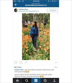 Inilah foto Selfie Wanita yang Injak bunga di Yogyakarta