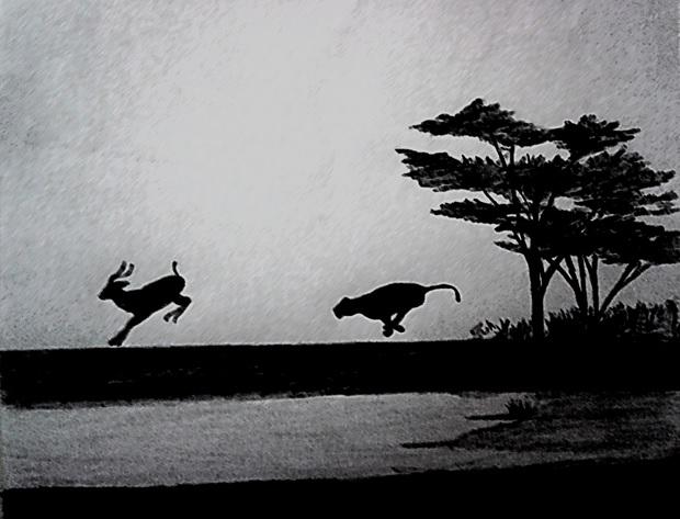 Wild animals skecth