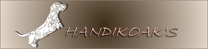 el blog de Handikoak's