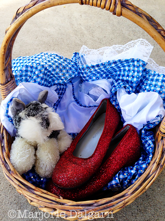 Living with ThreeMoonBabies | Dorothy costume
