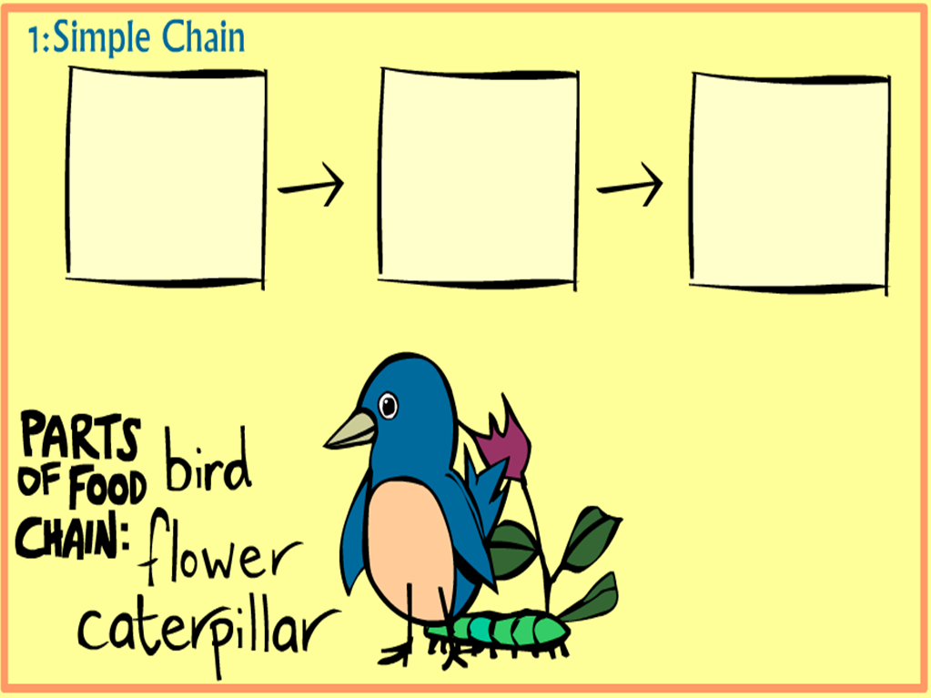 Play Food Chain Game