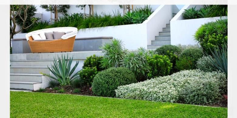fungsi taman dan kolam di rumah
