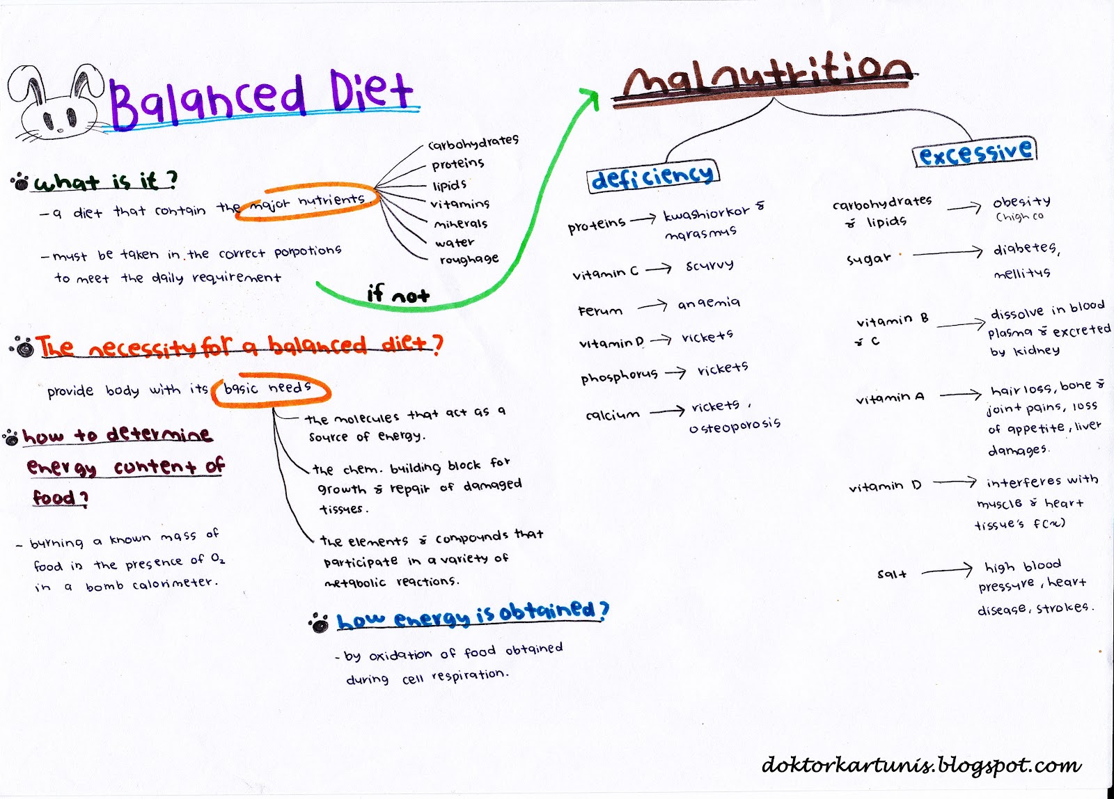 Nutrition Mind Map
