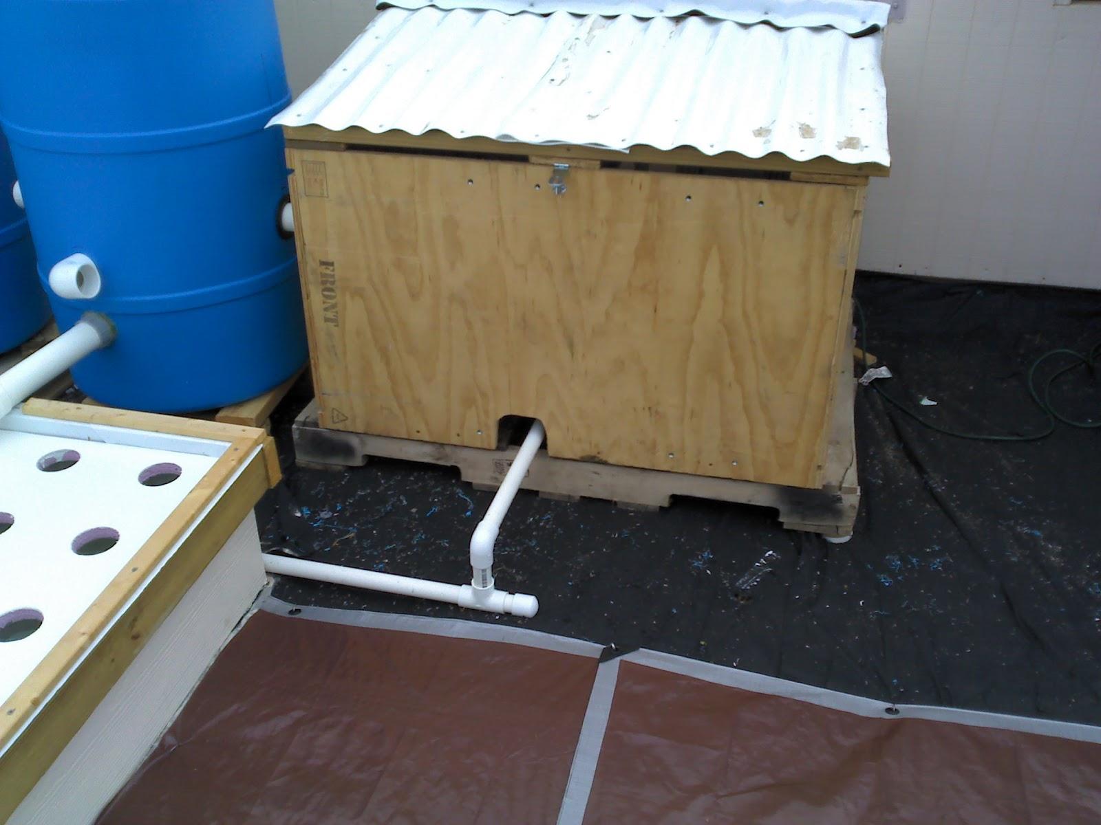 how to build a dwc aquaponics system